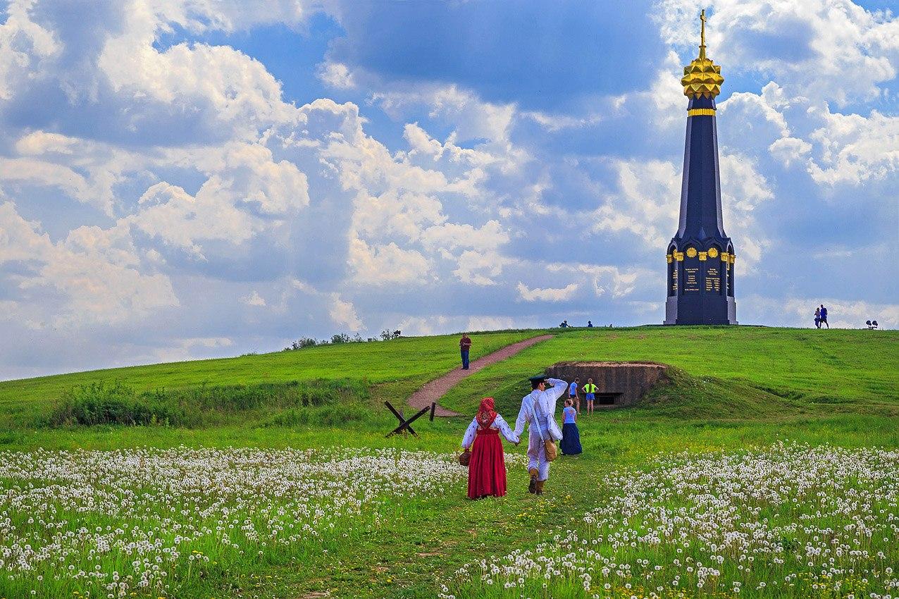 Картинки поле бородинское сайте собраны